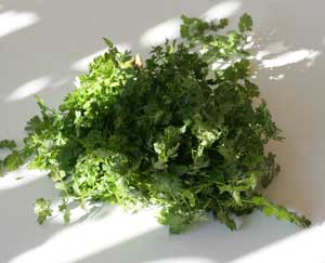 Greens: Bur Chervil. Kafkalithra in Greek.