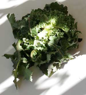 Glossary of Edible Greens