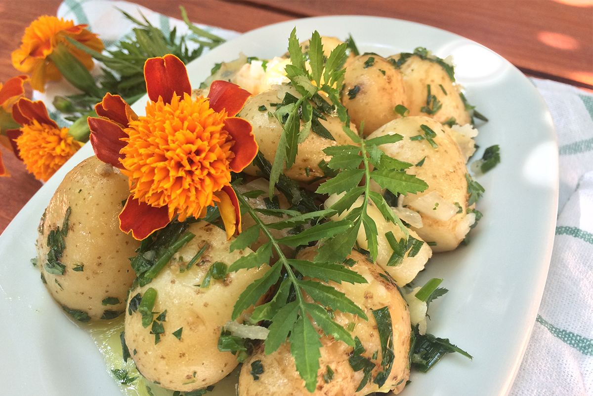 Ikaria Longevity Potato Salad with Herbs and Marigold Leaves