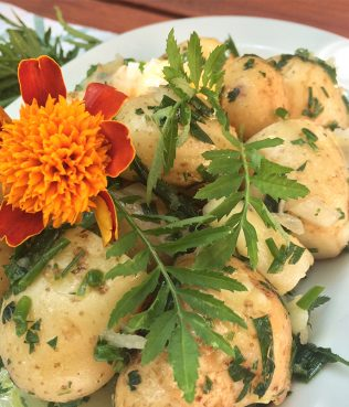 Ikaria Longevity Potato Salad with Marigold Leaves & Chives