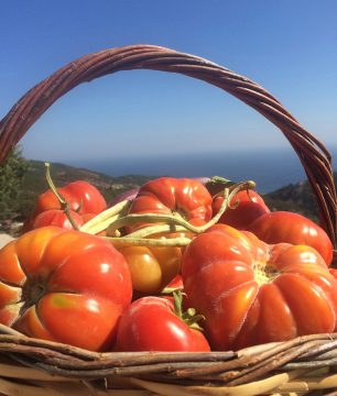 Heirloom tomatoes from our Greek garden