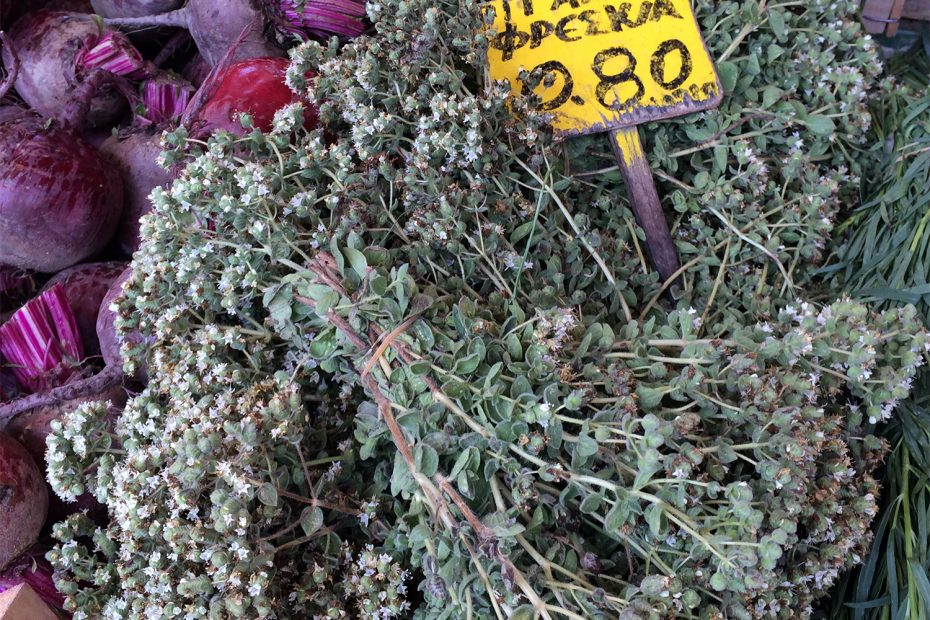 oregano dried in Greece