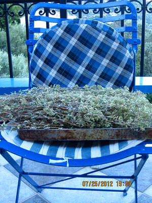 Ikarian Oregano Drying.