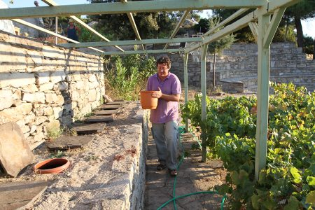 Nikos carries the m ust to a larger clay amphorae.