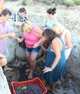 Ikaria: Making Wine with My Feet