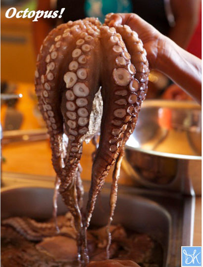 Octopus ready to cook