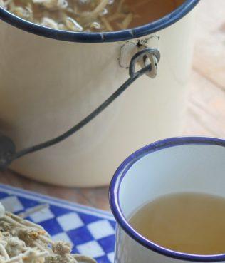 Beyond Flavor: Herbs as Medicine on Ikaria